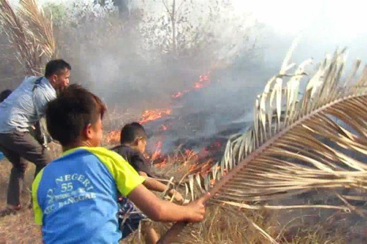 Sembilan hektar lahan gambut di Majene terbakar dan merembet ke permukiman warga. Warga panik karena dikepung asap tebal, Selasa (6/8/2019).