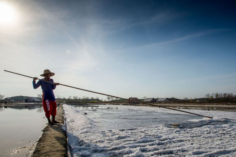 Salah satu petani tambak garam di Madura.
