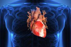 Studi Ungkap Cara Virus Corona Langsung Infeksi Sel Jantung Pasien Covid-19