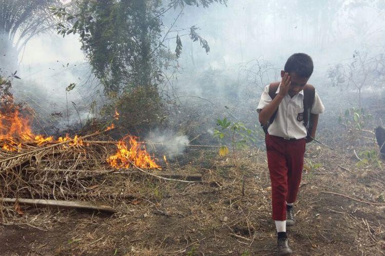 Askurniawan menjauh dari api karhutla setelah mencoba melakukan pemadaman menggunakan kayu, Selasa (14/8/2018).