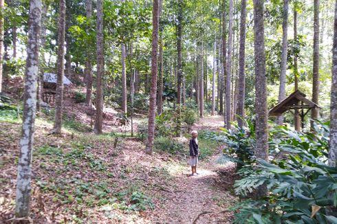 Pemkab Kukar Akui Belum Beri Bantuan Pemeliharaan Hutan Kota Milik Kakek Suhendri