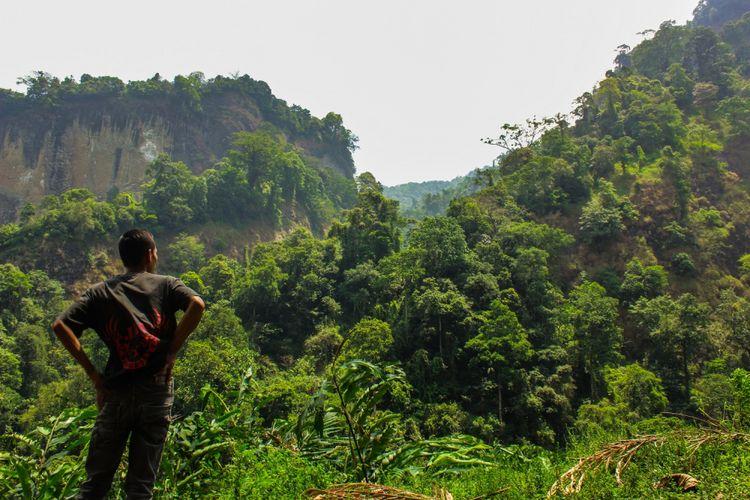 Seorang warga Desa Kramat mengamati habitat burung garuda dan owa jawa di Kompleks Hutan Perhutani Gunung Buthak, Kecamatan Karangmoncol, Purbalingga, Jawa Tengah, Senin (18/9/2017)