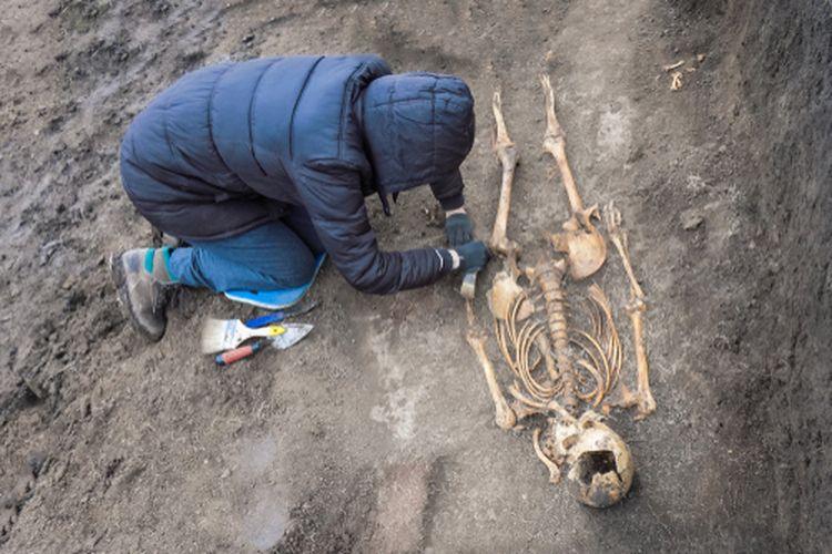 Ilustrasi penggalian fosil manusia