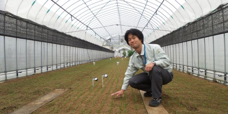 Rekayasa Lingkungan untuk Pertanian Rumah Kaca
