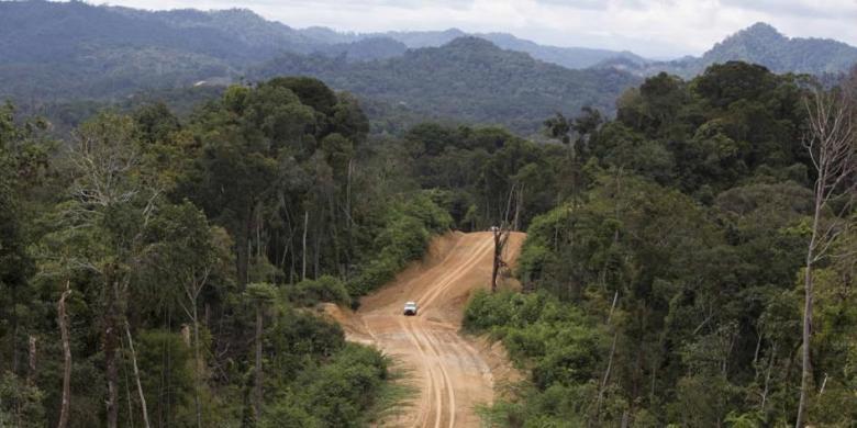 Kisah Empat Hari Tersesat di Pedalaman Rimba Perbatasan Indonesia