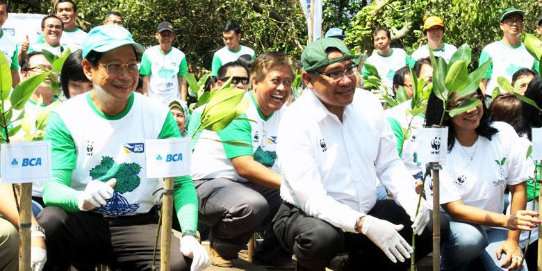 Peduli Lingkungan Dengan Tanam Pohon Mangrove Kompas Com