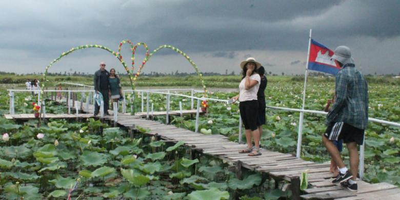 Biji Bunga Lotus Makanan Camilan Dari Kamboja