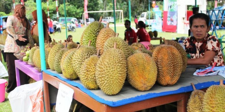Seperti Payudara Durian Jumbo Ini Diberi Nama Susu Molek Kompas Com