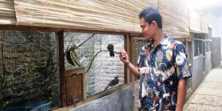 Pemuda 33 Tahun Ini Tangkarkan Burung Dengan Omzet Miliaran Rupiah