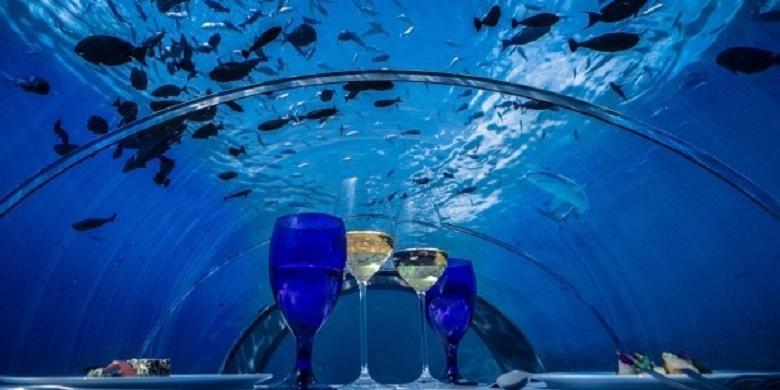 Ini Dia Restoran Bawah Laut Terbesar di Dunia, Tampilannya Bikin Melongo!