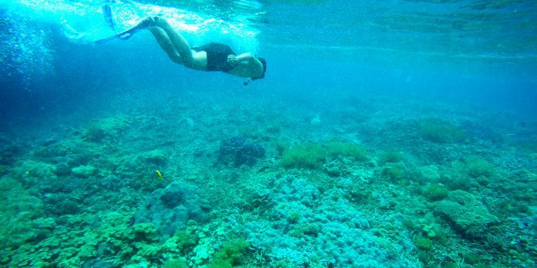 """Tiga Desa di Raja Ampat dengan Tempat """"Snorkeling"""" Dekat Dermaga Halaman  all - Kompas.com"""