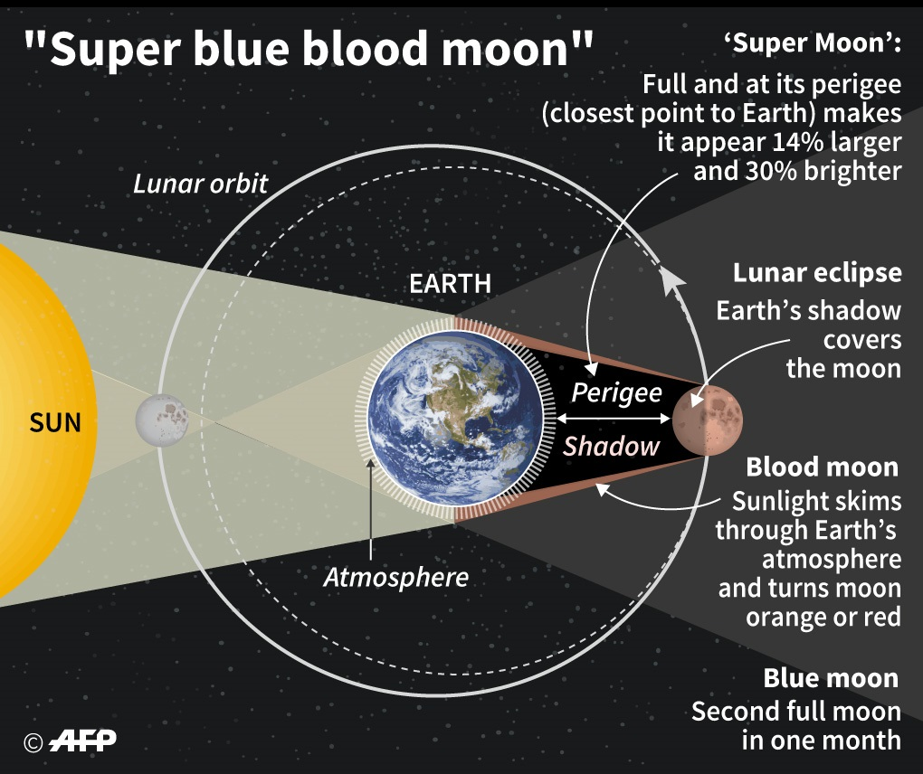 Proses terjadinya super blue blood moon (AFP)