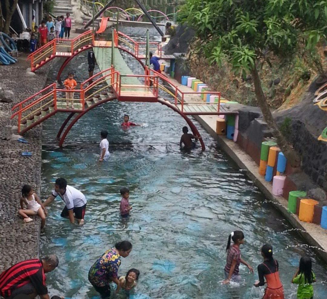 berenang dengan ikan watergong