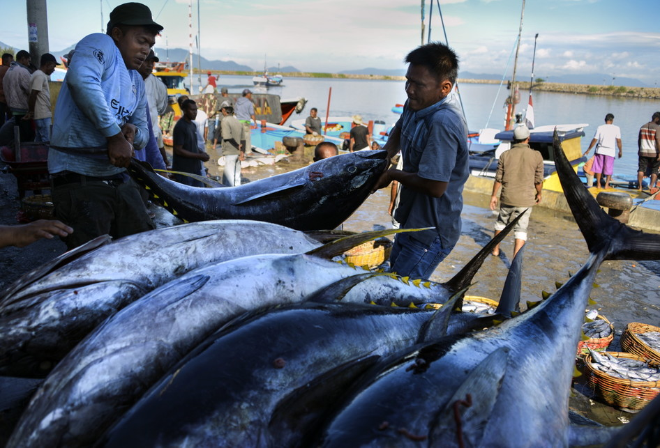 INDONESIA-ECONOMY-FISHING