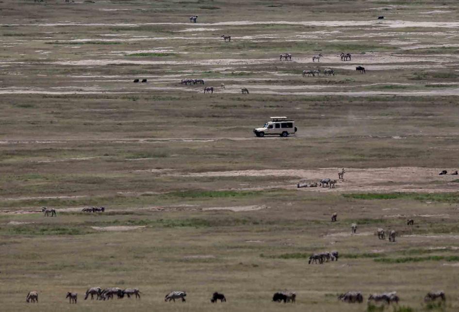 Taman Nasional dan Kawah Ngorongoro di Afrika