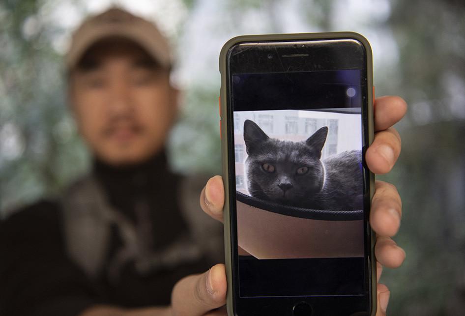 Detektif Cari Hewan Peliharaan yang Hilang di China
