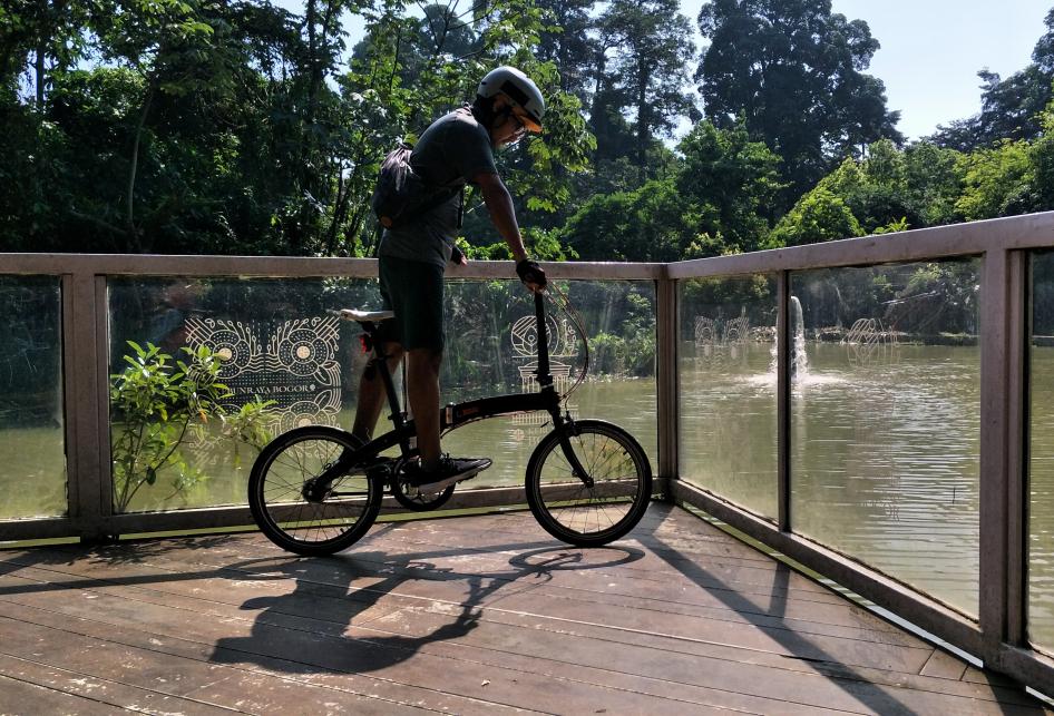 Sudut-sudut Kebun Raya Bogor untuk Berfoto