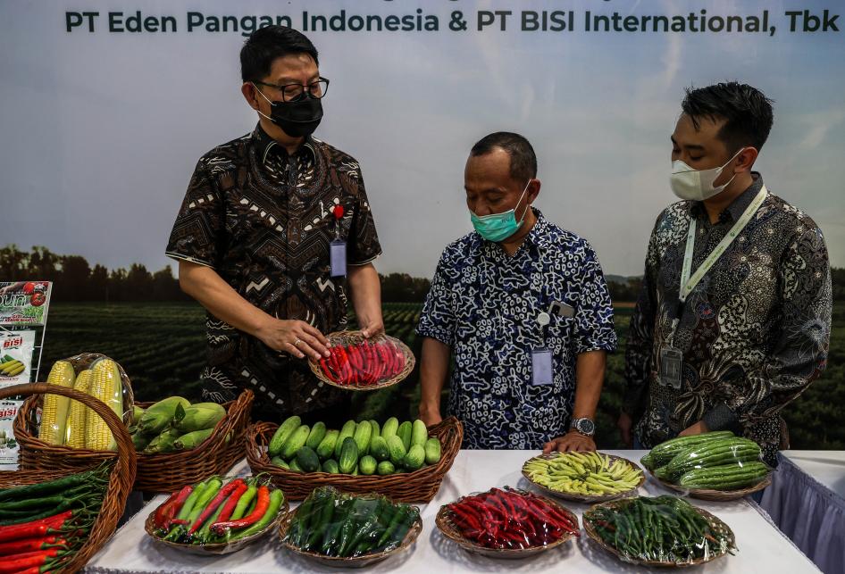 Eden Farm Gandeng BISI Targetkan 186.000 ton Sayur Berkualitas