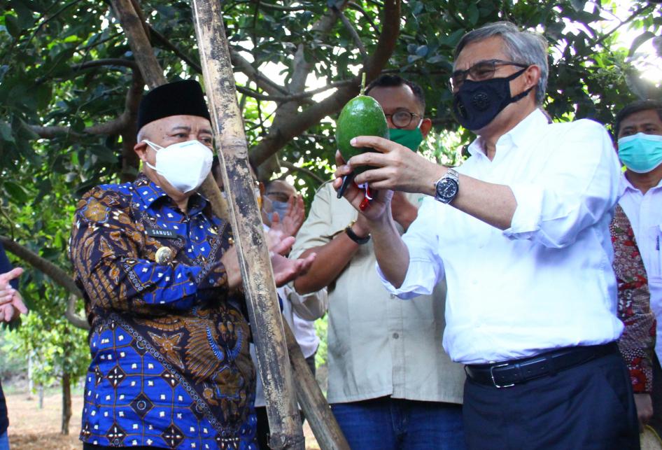 OJK Tingkatkan Akses Pembiayaan KUR Petani