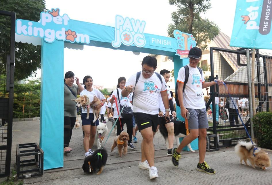 Jalan Santai Bersama Anjing di Pet Kingdom, Tangerang, Banten