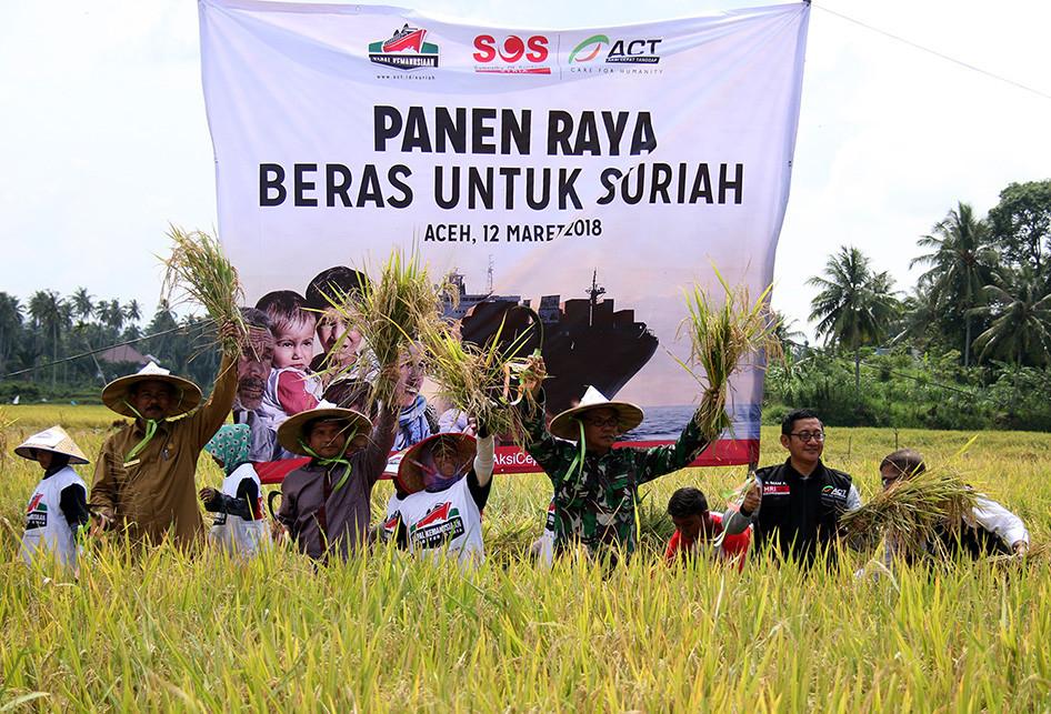 ACT Kumpulkan Padi Petani Aceh untuk Disumbangkan ke Suriah